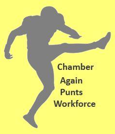 Chamber Punt2
